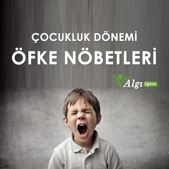 https://www.algiegitim.com/uploads/haberler/cocuk_ofke.jpg